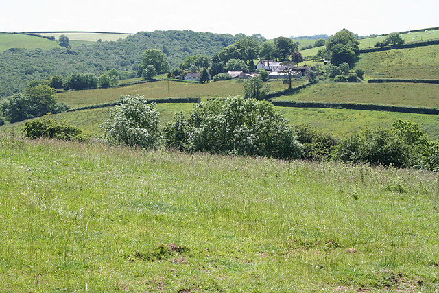 Stoodleigh: by Coleford Bottom