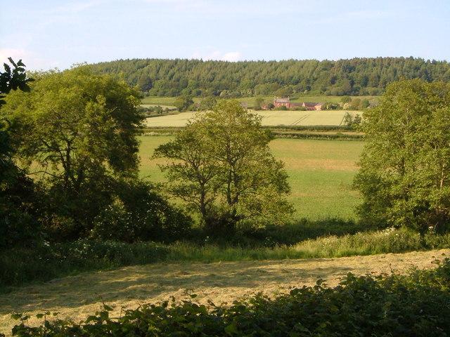 Buckton Hill and Farm