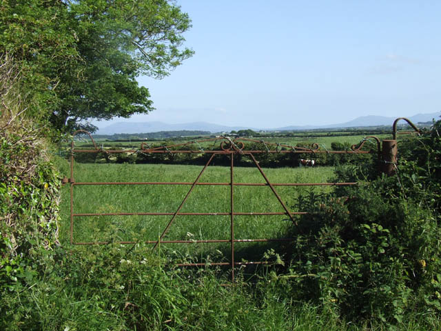Metal gate into a field