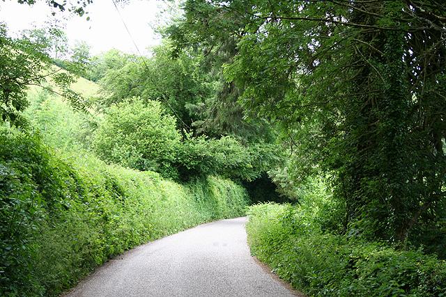 Washfield: near Dryhill