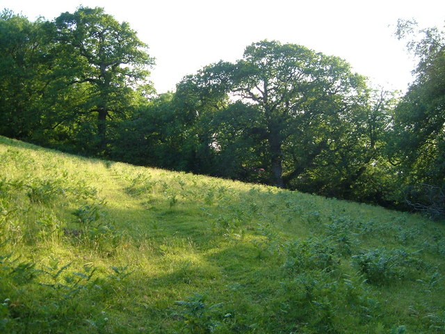 Orleigh's Hill