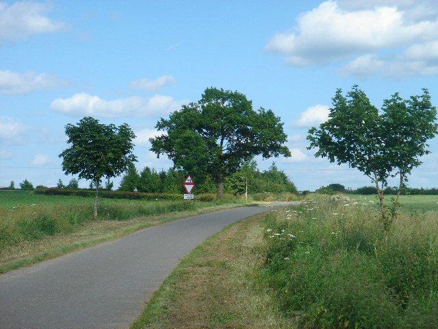 Mills Lane from Rodbridge Farm