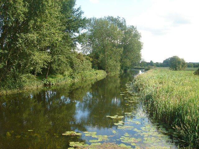 River Stour at Rodbridge