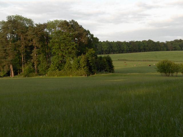 The Keir Estate