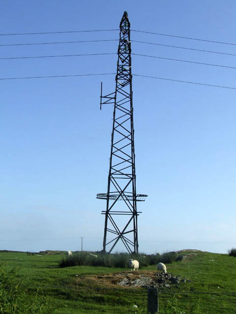 Sheep and a pylon