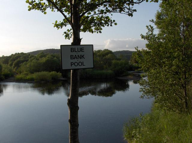Blue Bank Pool