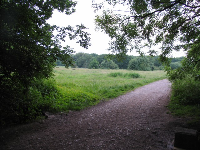 Burbage Wood