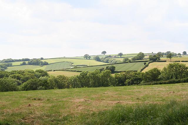 Washfield: by Middlehill