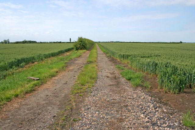 Farm Track at Red Barn Farm