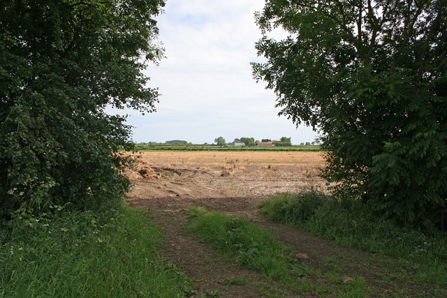 Farmland near Scothern, Lincolnshire