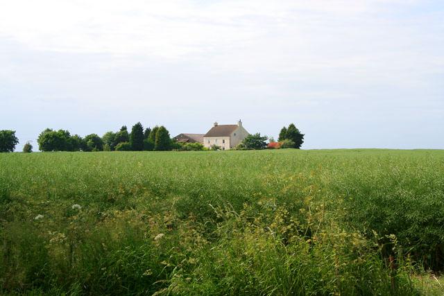 Farmland near Stainton by Langworth