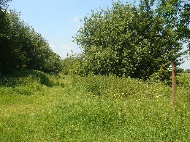 Bridleway to Lidgate