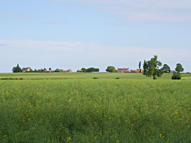 Farmland at Swinthorpe