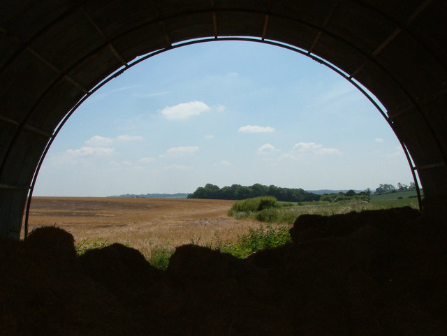 View towards Toyd Down, Hampshire