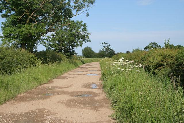 Ashing Lane near Dunholme