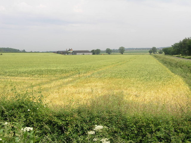 Field and a Farm