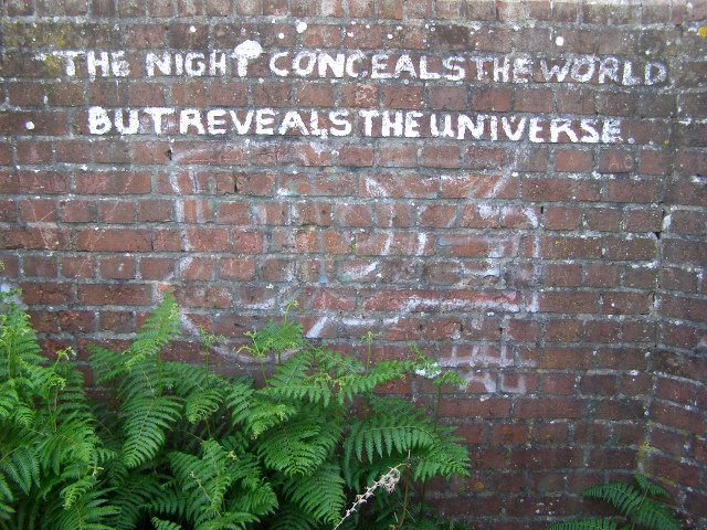 stencil graffiti: the night conceals the world / but reveals the universe