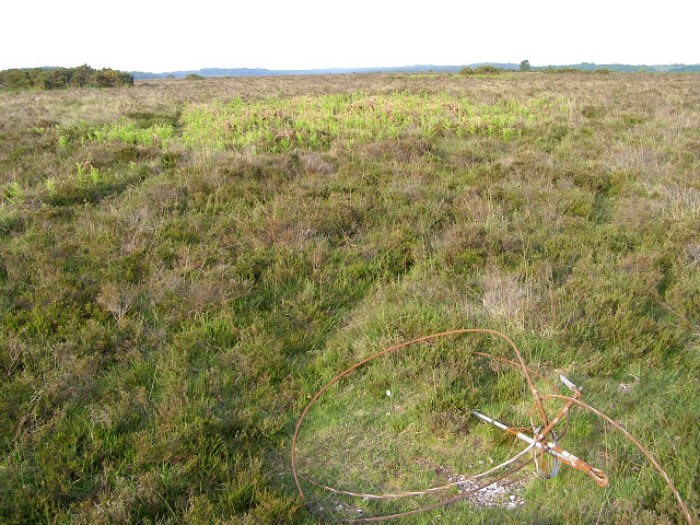 Bronze age and 20th century relics on Ibsley Common, New Forest