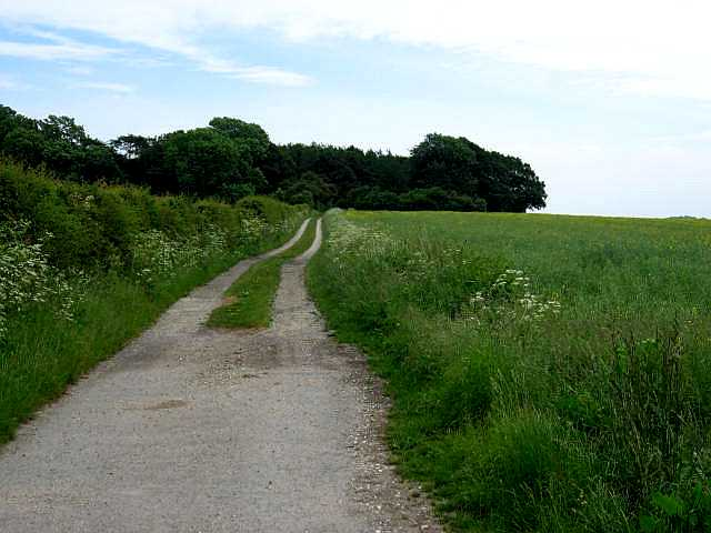 Footpath to The Warrens