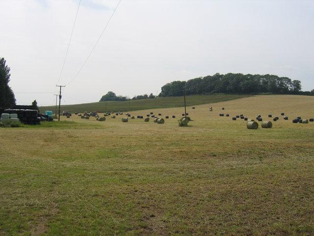 Haymaking at Nolands Farm