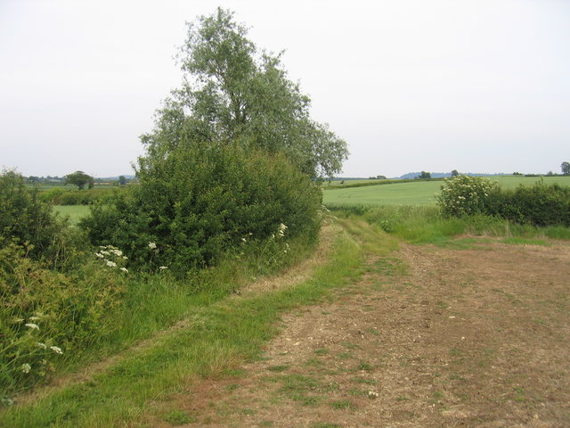 Footpath to Herd Hill