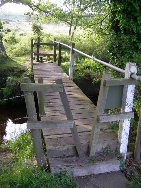 Footbridge over Dockens Water, New Forest