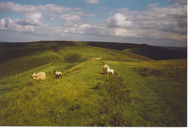 The Wansdyke on Tan Hill.