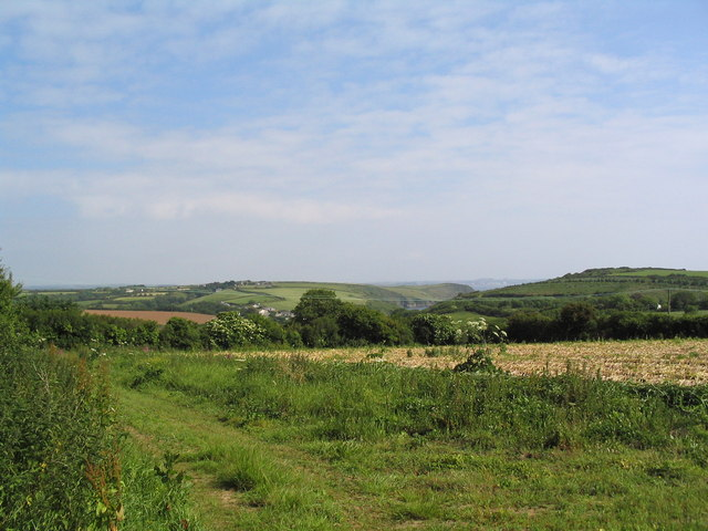 Set-aside field, near St Keverne