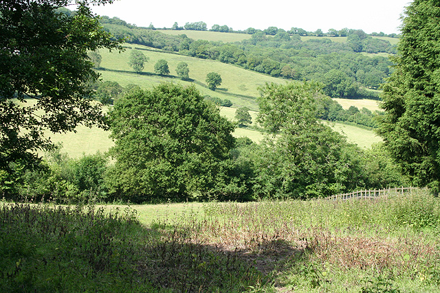 Combe Raleigh: near Windgate House