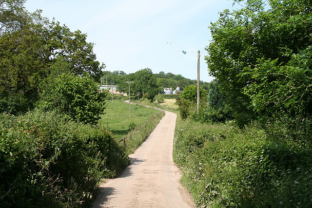 Luppitt: lane to Shapcombe Farm