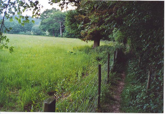 Footpath by Underley Copse, Pickhurst.