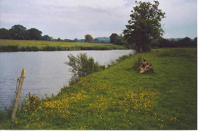 Pond by Brinsbury Campus, Adversane.