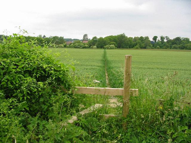 Footpath  Chalbury Dorset