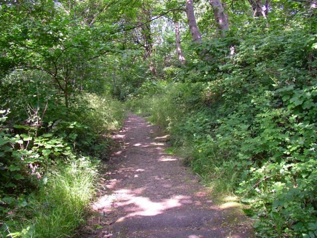 Coal Pit Lane, Salford, Almondbury