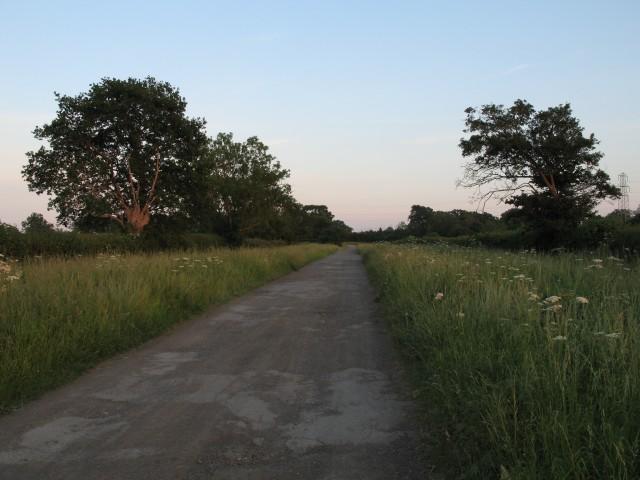 Lane from Rowde Croft Farm