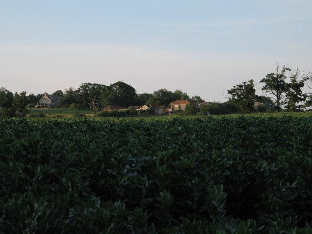 Sandridge Farm
