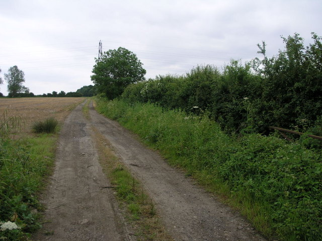 Track to Grafton Wood
