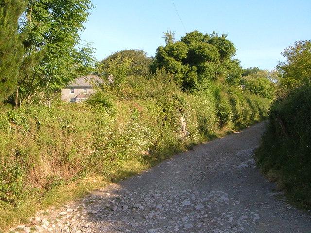 Ley Farm and drive