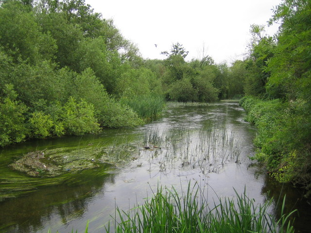 River Colne near West Drayton