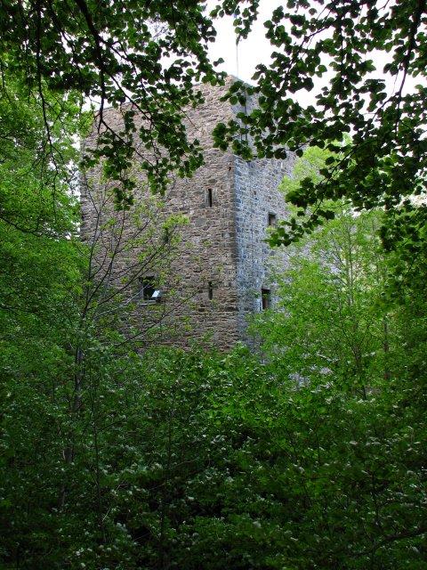 Garth Castle