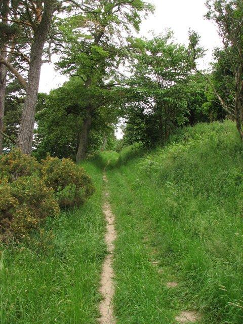 Merrybrae path