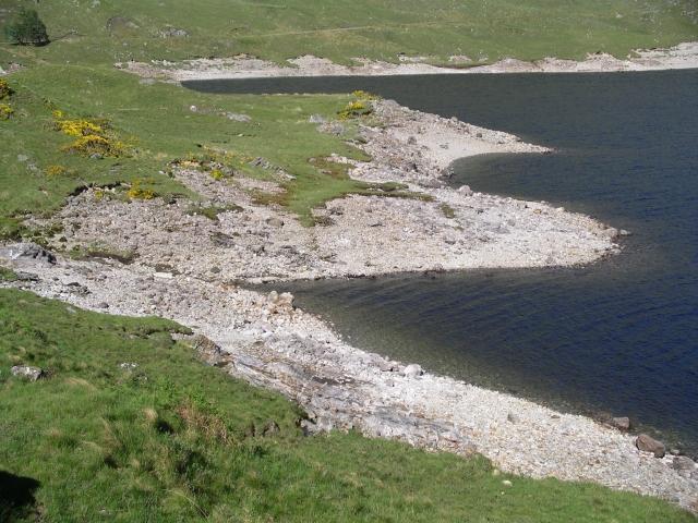 Shoreline, Loch Quoich
