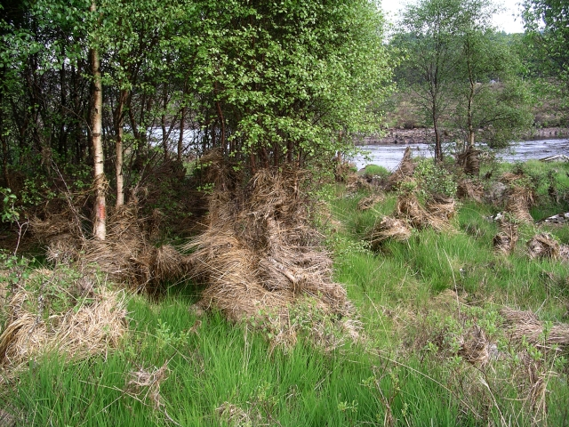 Flood debris, River garry