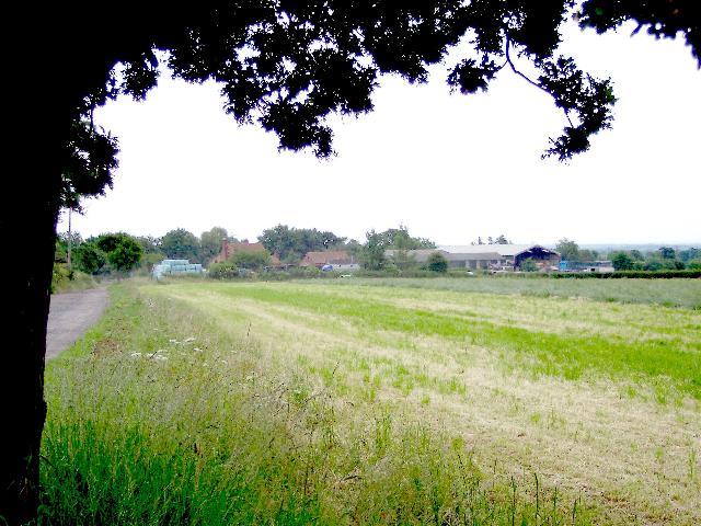 Mayall's Farm