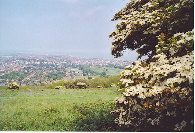 Eastbourne from Crapham Hill.