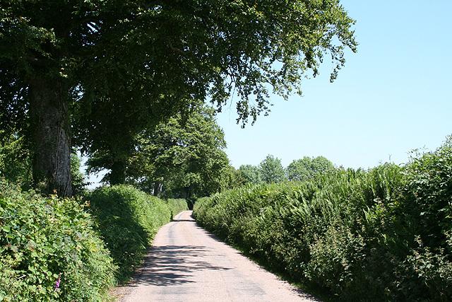 Tiverton: near Withleigh Cross