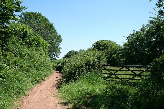 Loxbeare: bridleway