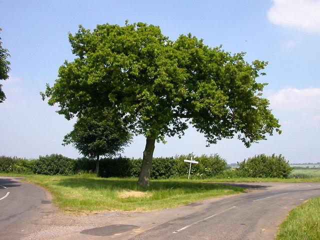 Woodfordhill