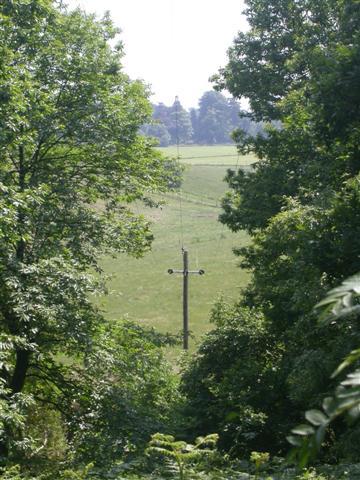 near Witley
