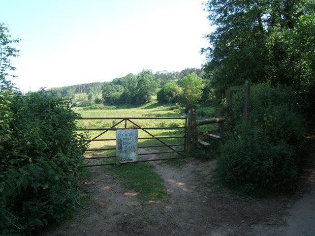 Gate and stile near Ford Farm, Albury